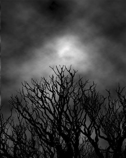 Dark20Night - English Poetry Polling Nov 2010