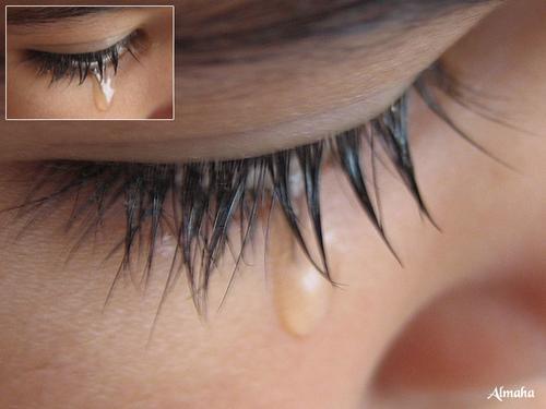 http://www1.sulekha.com/mstore/arambhusal/albums/default/tear.jpg