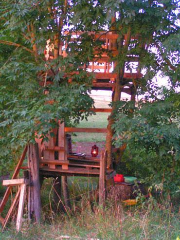 Habitats alternatifs, cabanes et huttes - Page 2 Cabane-dans-les-arbres