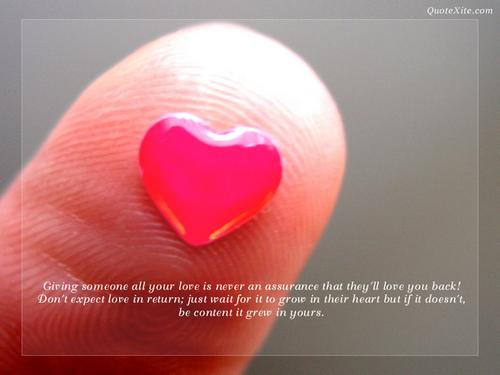 wallpaper quotation. Love Quotation Wallpapers