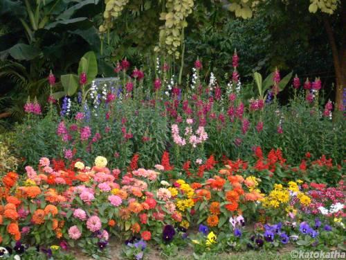 Agri Horticultural Garden